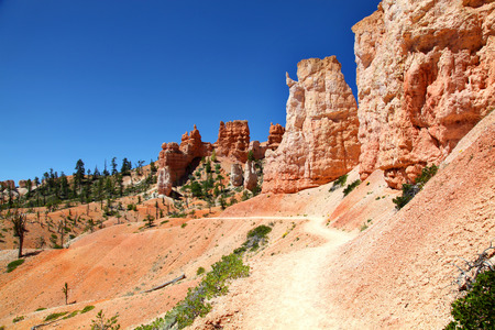 Hiking trail along pink hoodoo wall on the Fairyland Trail in Bryce Canyon National Park