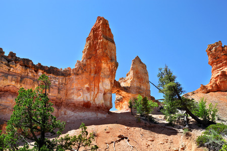 Tower Bridge Rock formation in Bryce Canyon National Park