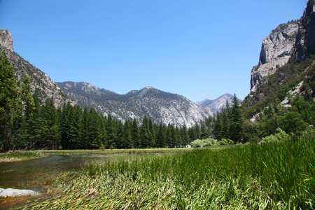 View of Zumwalt Meadow in Sequoia and Kings Canyon National Park 版權商用圖片