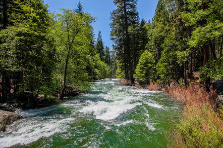 Raging green waters of the Kings River in Kings Canyon National Park California