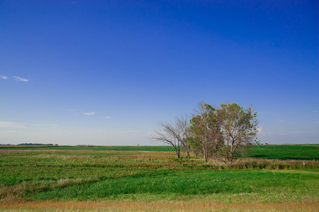 Landscape of the country side in America. America is a continent where American mainly live.