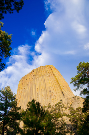 Devils Tower is located in in Crook County, northeastern Wyoming. Stockfoto