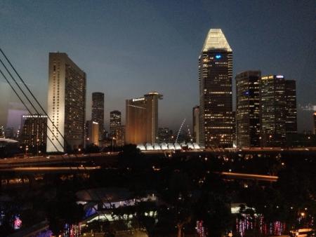 nite: Singapore night