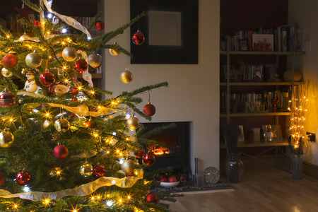 Illuminated Christmas tree in living room