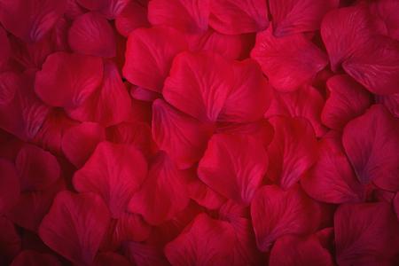 Red fabric rose petals