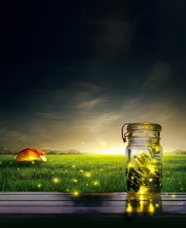Fireflies in bottle with beautiful nature landscape