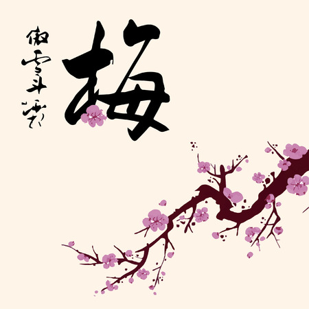 plum flower: Plum flower Illustration