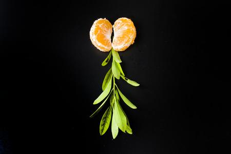 creative: Orange creative Stock Photo