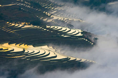 yuanyang: Terraced rice field  Yuanyang Hani