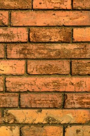 vetical: Antecedentes Vetical naranja sucio muro de ladrillo