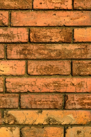 vetical: Vetical Orange Grungy Brick Wall Background