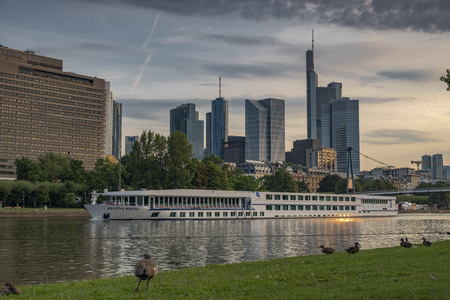 Ducks on the banks of the River Main with the skyline of Frankfurt Financial district behind Editorial