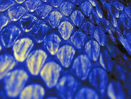blauw Snakeskin