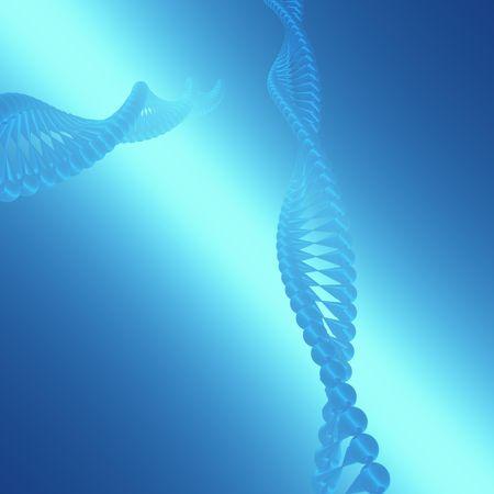 DNA II photo
