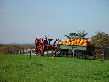 parkway: This old tractor sits along the Blue Ridge Parkway with a wagon full of pumpkins