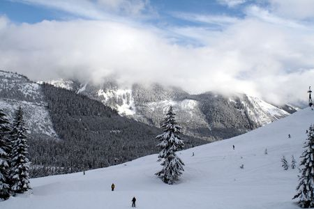 blanketed: Looking at a snow covered mountain with skiers.