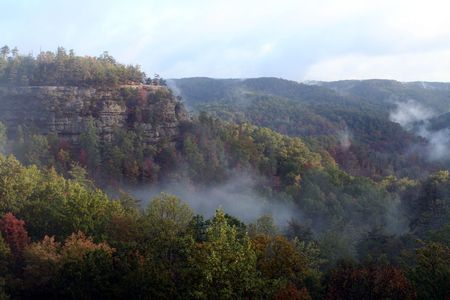 Fall colors are separated by the rising fog and a cliff face. Фото со стока