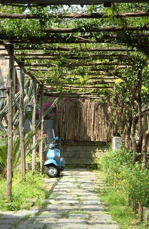 A blue scooter parked under grape vines in Sorrento, Italy. photo