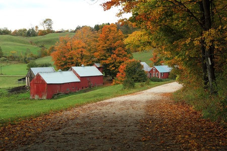 A country road leading to the Jenny Farm in Vermont. Stock Photo - 8825285
