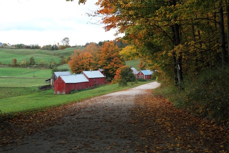 A country road leading to the Jenny Farm in Vermont. Stock Photo - 8823154