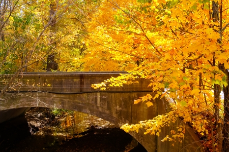 A bridge spanning a creek with fall colors. Stock Photo