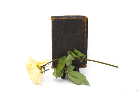 A dried rose and an old bible on a white background.