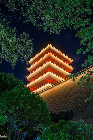 Looking up through the trees at the Jinhea Tower lit up at night in Jewangsan Park in South Korea.
