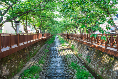 The Yeojwacheon Stream flowing through Chinhae in South Korea.  The image uses the symmetry and leading lines to pull the viewer into the image.