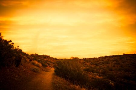A trail through the desert of the American southwest in Arizona looking at a colorful sunset with clouds.