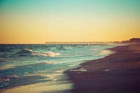 Samotna mewa stojąca na piasku plaży przed domami na plaży w wieczornym świetle.