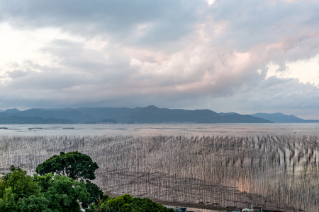 shelfs: 16 August 2016, the morning of the beautiful coastal intertidal zone of shajiang village in Xiapu county of Fujian province in where the fisherman cultivating kelp with the bamboo shelfs. Stock Photo