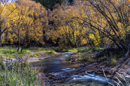 The colourful trees and stream at Arrow town in Autumn south island of New Zealand.