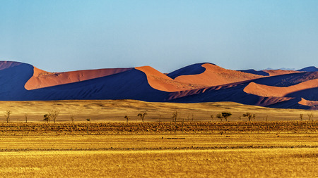 Las dunas de Sossusvlei, Namibia.
