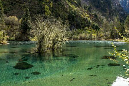 Beautiful autumn scenery of Bipeng Ditch in Sichuan, China. Foto de archivo