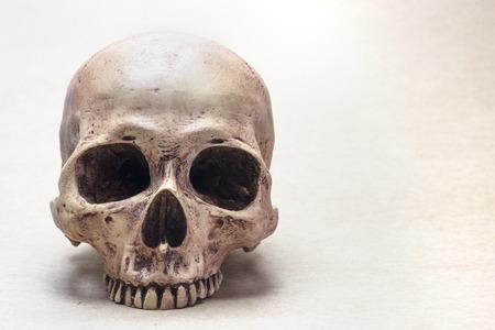 huesos humanos: cráneo en papel marrón de la vendimia