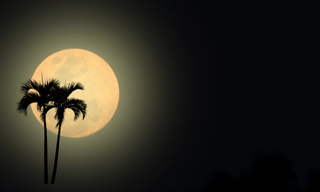 Silhouette on full moon background