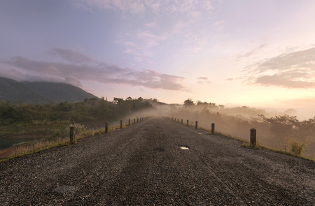 Road in Morning Mist and Sunlight