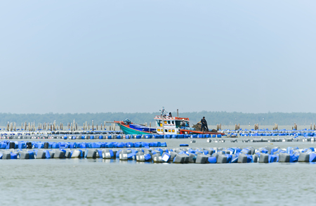 Oyster farm,and Oyster boat in sea of Thailand