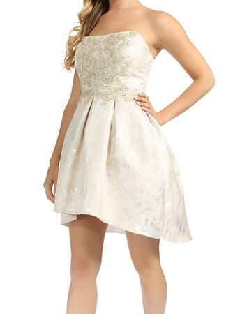 white Strapless Lace Dress With Brooch in white background, white Strapless Lace Dress With Brooch in white background... Stock Photo