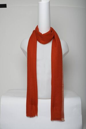 Red Scarf New Look with white background, Red Scarf New Look with white background Stock fotó