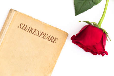 An old book by Shakespeare and a red rose sit on a white background; symbol of love and passion