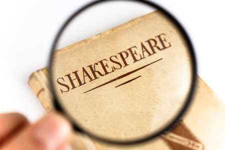 lear: A Book by Shakespeare under a Magnifying Glass