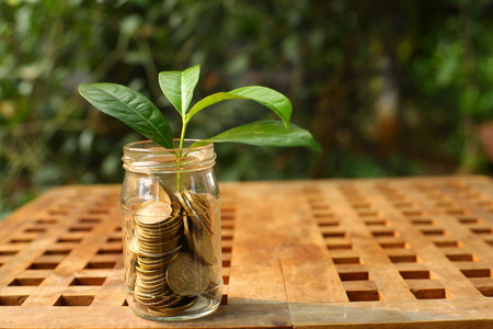 coin Glass and growing small plant, illustration for business profit increase