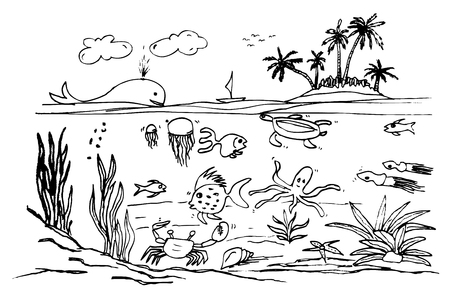 vector hand draw sketch of ocean life
