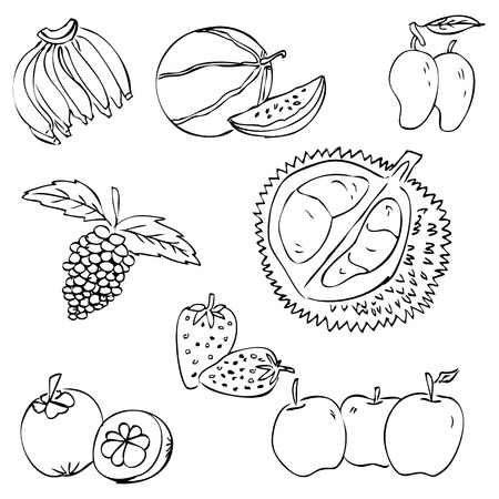 vector sketchy tropical fruit, banana, watermelon, manggo, grape, manggis, strawberry, apple, durian Stock Photo