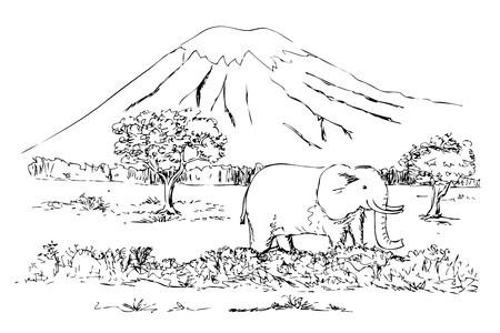 vector simple sketch of kilimanjaro mountain, tanzania Stock Photo