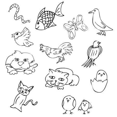 vector simple hand draw sketch bird, fish chicken, cat, egg, butterfly, worm, snake, rooster
