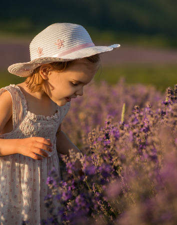 Beautiful little girl on the background of a lavender field at sunset 写真素材