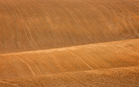 plowed: Plowed field background Stock Photo