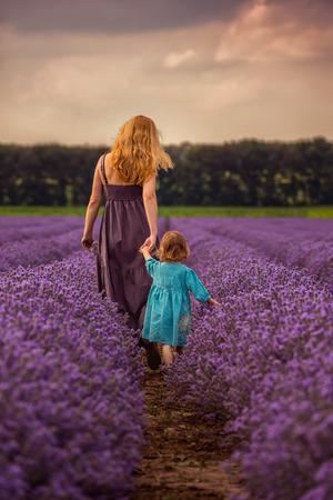 campo de flores: Mujer y ni�o en la espalda caminar en un campo de lavanda al atardecer Foto de archivo